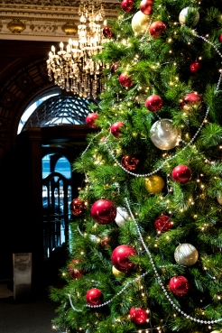 Christmas tree in the South Building